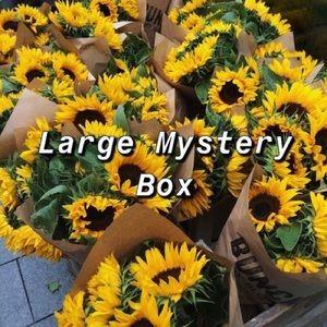 Large Mystery Box 🌻✨